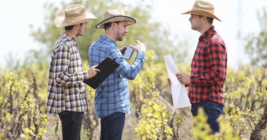 9 dicas para a gestão de pessoas nas fazendas