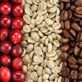 cafe-arabica-3-tipos.jpg