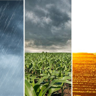931_2401-clima-tempo-chuva-milho-soja-2.jpg
