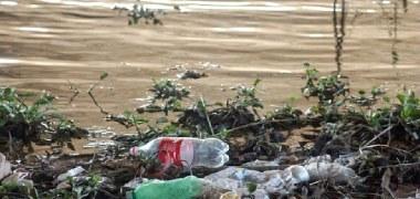 Mais lixo e doenças: privatização da água ameaça meio ambiente e saúde humana