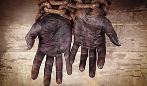 93% maior que em 2017: 1.246 trabalhadores em condições análogas à escravidão em 2018