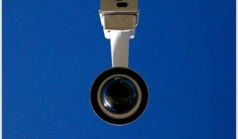 Vigilância na IT