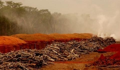 Minas Gerais é alvo da indústria criminosa da extração do carvão