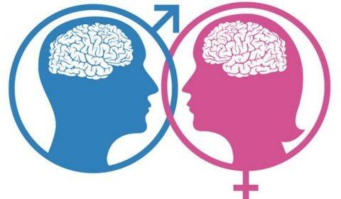 Significado de ''gênero'' será discutido na Câmara