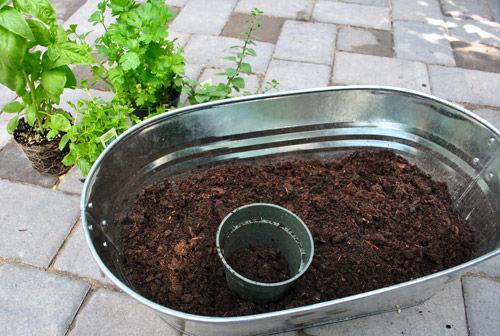 condicionador hortinha