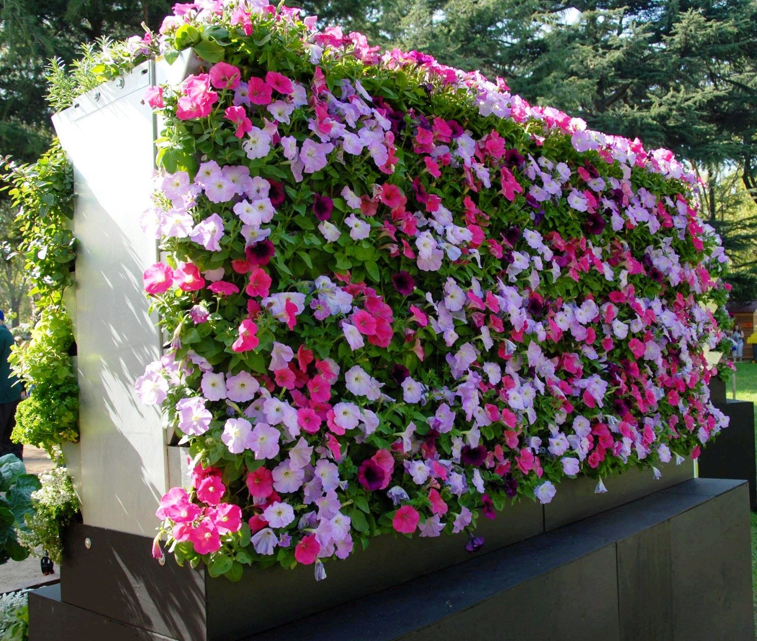 vertical flores
