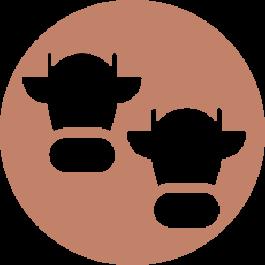 Associe coletivamente matrizes aos tipos: doadora, receptora e descarte
