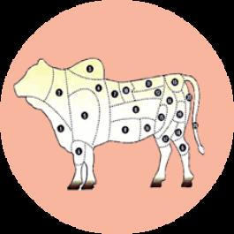 Associação de animais a vendas: registre informações de classificação de carcaça