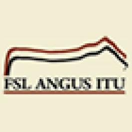 VII Leilão FSL Angus Itu e Seminário Cruzamento Angus