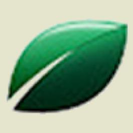 Rehagro inicia Pós Online em Gestão do Agronegócio