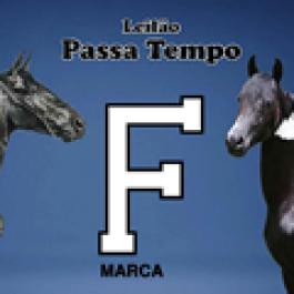 Leilão Passa Tempo - Marca F