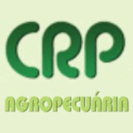 Leite a pasto sob pivô central na CRP Agropecuária