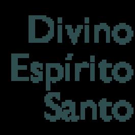 Marcelo Veneroso, Faz. Divino Esp. Santo, Sto Antônio Amparo - MG*