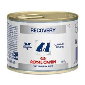 https://assets.izap.com.br/imperiodaracao.com.br/plus/images?src=catalog3/royal-canin-lata-canine-e-feline-veterinary-diet-recovery-wet.jpg&