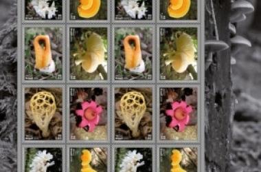 Selos têm tema os fungos/ Correios /