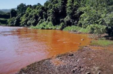 Leonardo Morais/Hoje em Dia / Estudo apontou contaminação por metais e indicou, como forma de prevenção, o limite diário de 200g de pescado