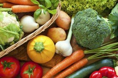 Circular sobre Decreto da educação alimentar e nutricional nas escolas de MG